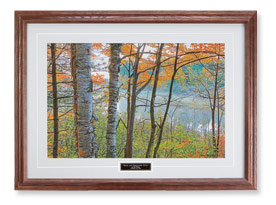 Birch and Manitowish River Print