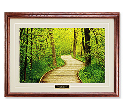 Meandering Boardwalk Print