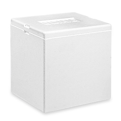 "Insulated Foam Container, 8 x 6 x 9"" - Skid Lot"